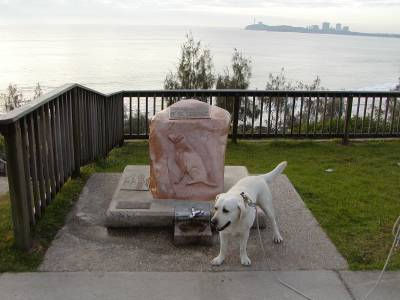 Sam the lab at the War Dog Memorial in Mooloolaba