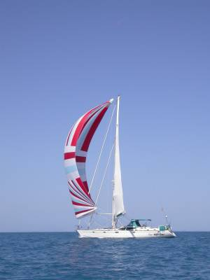Flying the spinnaker - Great Barrier Reef 2004
